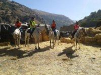 Paseo a caballo en Güéjar Sierra 1 hora