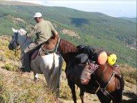 Ruta a caballo en Güéjar Sierra 4 horas