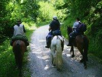 Percorsi naturali a cavallo