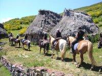 Visita online delle Asturie