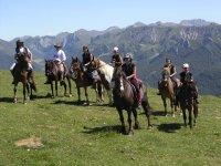 Bellissimi esemplari da percorrere a cavallo
