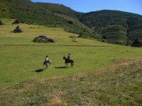 Equitazione nelle Asturie