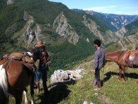 Paesaggi asturiani a cavallo