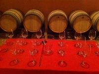 参观酒窖Boheda葡萄酒和油品尝