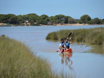 Discesa in kayak da Doñana a Sanlúcar 2 ore