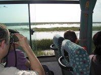 Visitar el Parque de Doñana en todoterreno 4 horas
