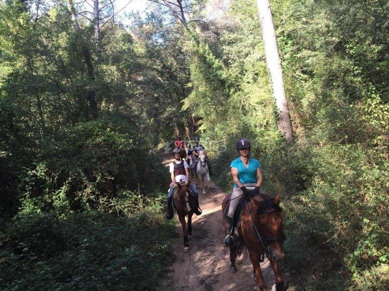 A caballo por el sendero entre los arboles