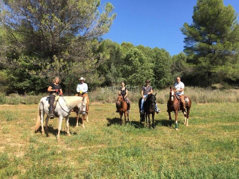 Excursion bajo el sol con caballos