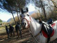 Rutas a caballo en Cofrentes
