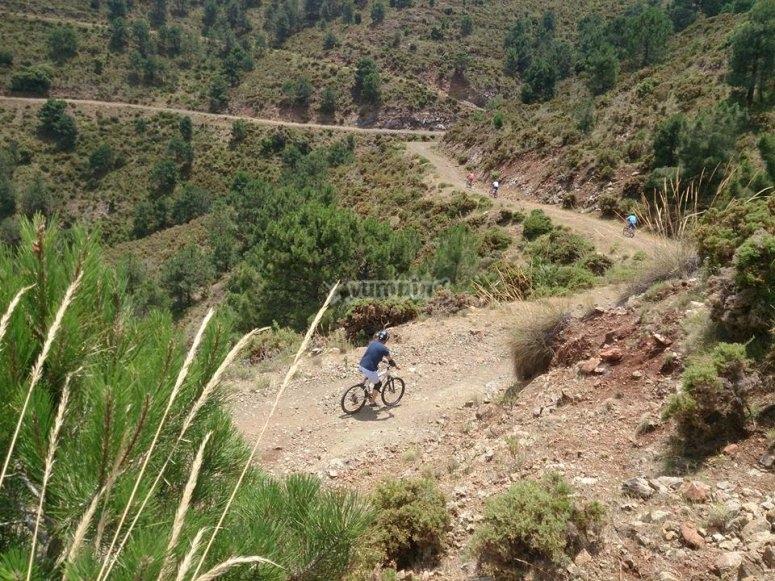 Bike tour in Sirra de las Nieves