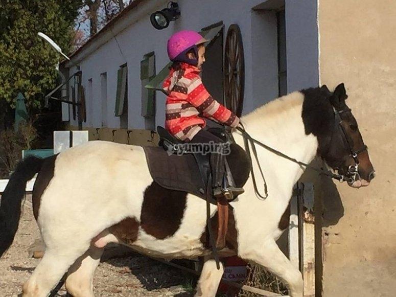 Paseo en poni en Aranjuez