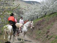 Ruta a caballo en Güéjar Sierra 2 horas