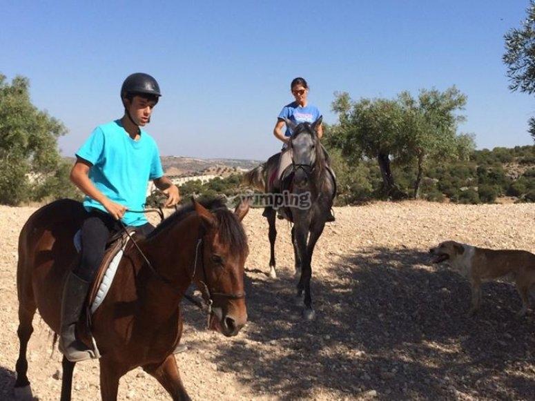 a caballo en ruta