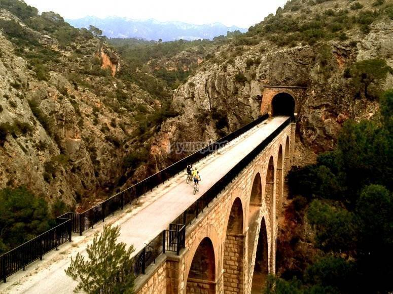 Puente y túnel vía verde