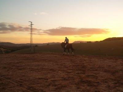 Montar a caballo para 2 Morón de la Frontera 2 h