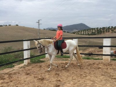 Horseback riding lessons 1 day a week Morón