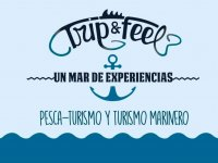 Trip & Feel