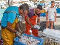 Selección de pescado a bordo en Peñíscola