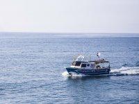 Embarcación pesca-turismo Castellón