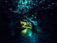 Cueva de Waitomo