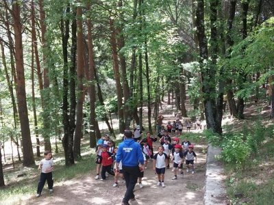 Multi-Adventure School Trip, Madrid, 5 days