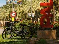 Alquiler de bicicleta en Mallorca 1 día completo