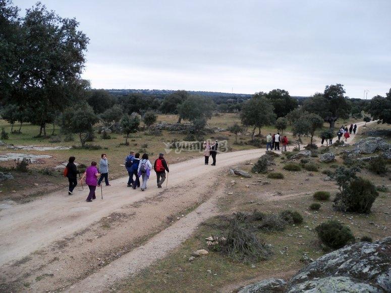 escursionisti al pascolo