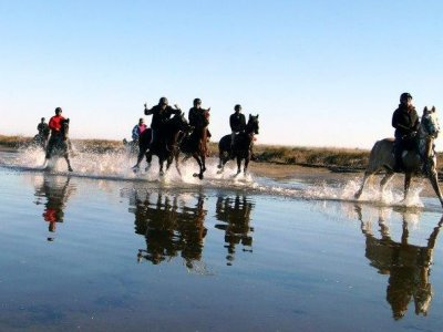 1h horse riding tour in Riudoms