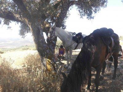 Ruta a caballo en El Entredicho media jornada