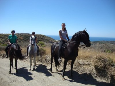 Andalusian Horse Adventures