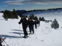 Snowshoeing+ Photos in Port del Comte