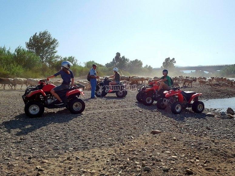 Circulando en quads cerca de la Costa del Sol