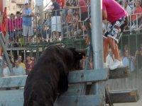 Escapando del toro