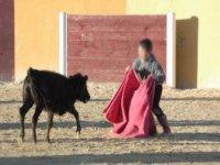 Joven torero