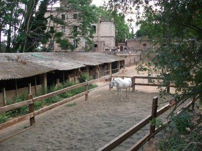 Clase de iniciación a la equitación Molins de Rei