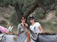 Enjoying the donkeys