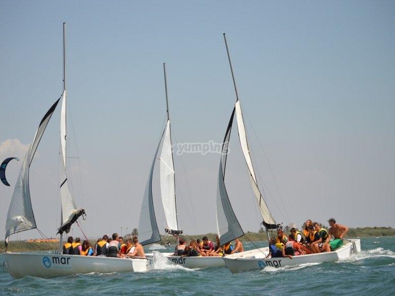 Several sailboats