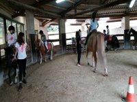 Aprendiendo a montar a caballo en Arteixo