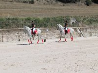 Horse riding school in Pamplona