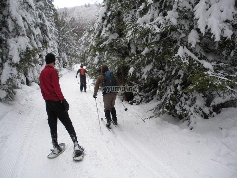 穿越无步履艰难与雪鞋穿着雪鞋走
