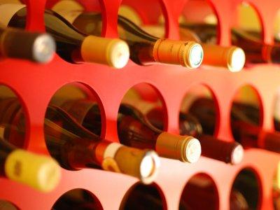 Oenology Team Building Sierra de Madrid 4 Wines