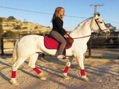 Classe di iniziazione a cavallo a Villajoyosa 30m