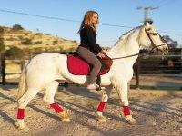 Curso de equitación Villajoyosa