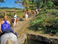 Recorriendo las zonas rurales gallegas a caballo