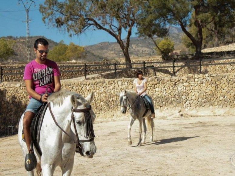 在阿利坎特学习骑马