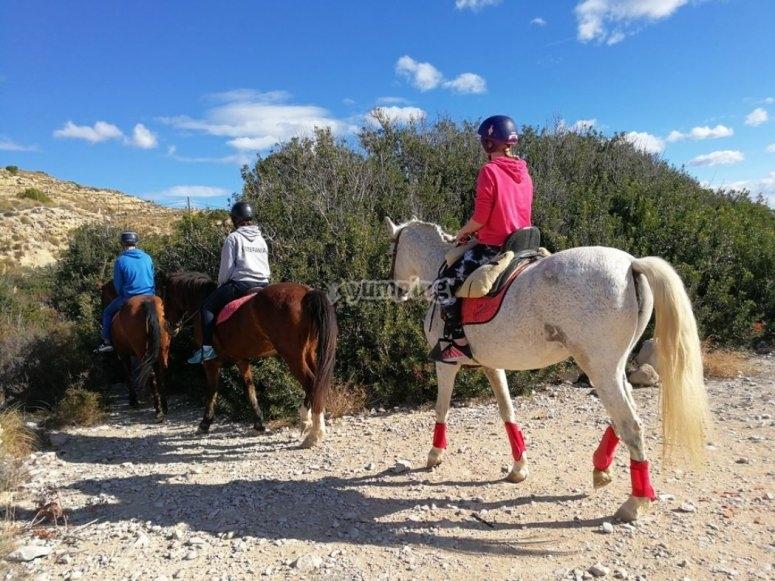 阿利坎特沿海滩骑马