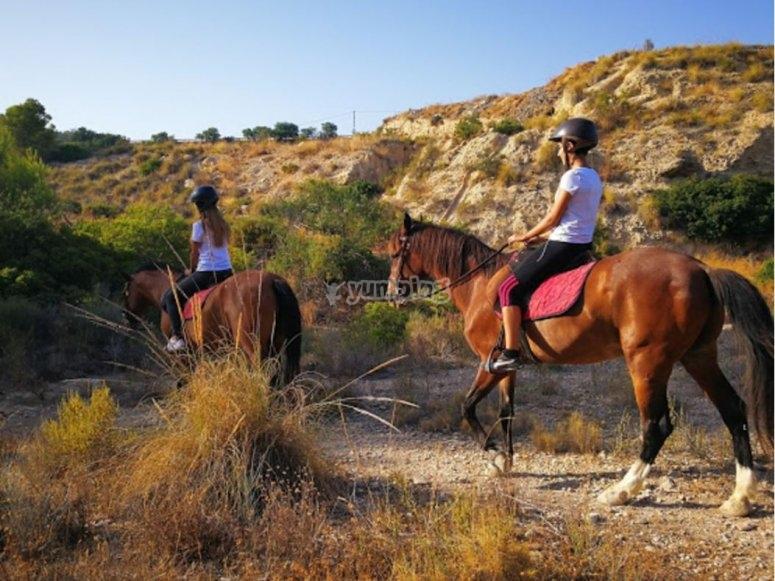阿利坎特(Alicante)团体中的骑马
