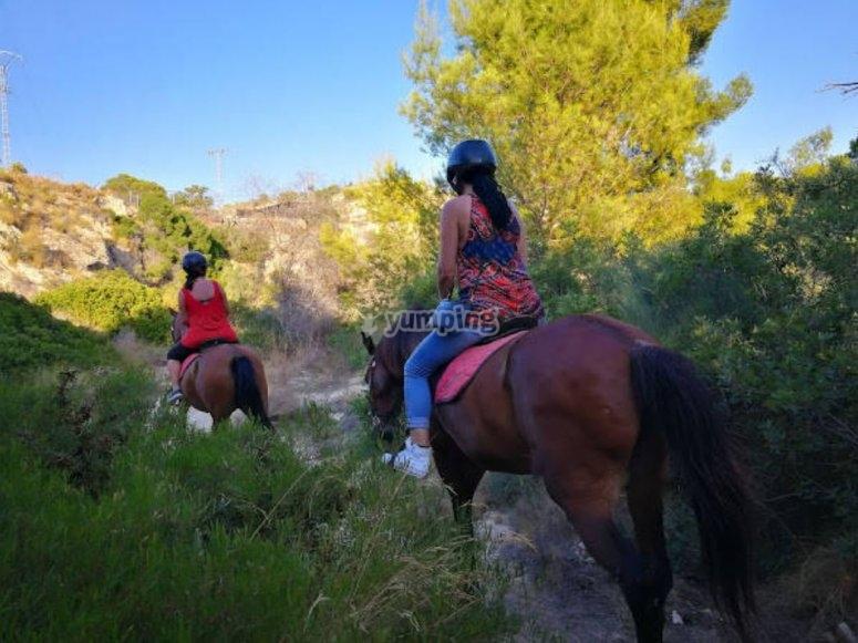 通过维拉约尤萨(Villajoyosa)骑马之间