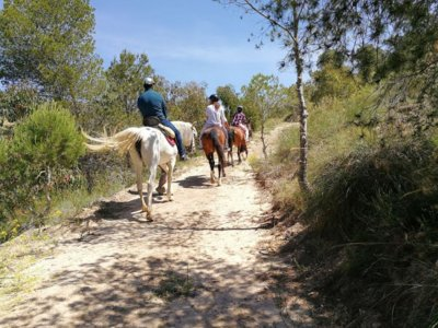 Horse Riding w. Sea Views, Villajoyosa, 45m