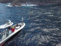 八人乘船游览特内里费岛